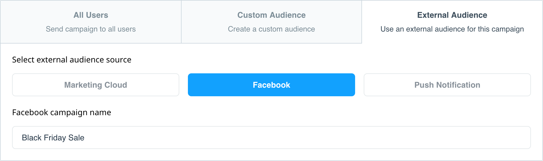 External audience Facebook campaign